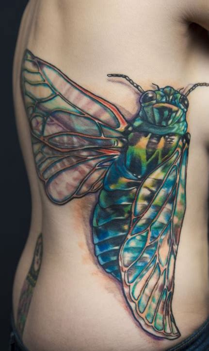 tattooed heart md my cicada tattoo by amy nicholls at tattooed heart studios