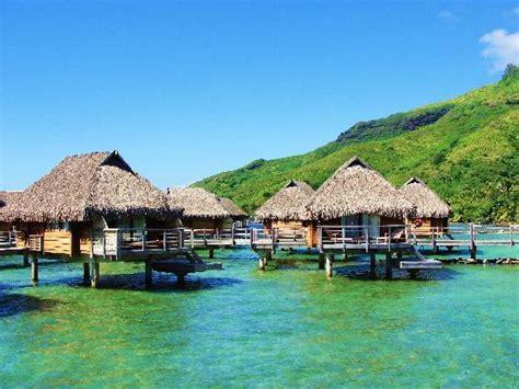 best overwater bungalows in moorea the pool picture of manava resort spa moorea