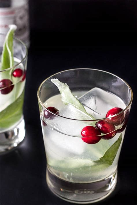 cocktail drinks recipe easy cranberry sage cocktail salted plains