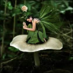 fairies and elves elves fairies pixies pinterest
