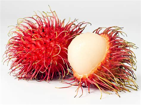 a fruit is most commonly the health benefits of rambutan fruit health benefits