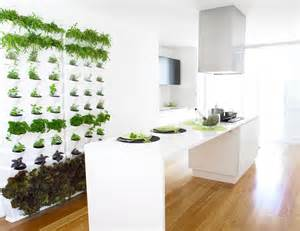 Kitchen Herb Garden Ideas by Kitchen Herb Garden Interior Designs Home