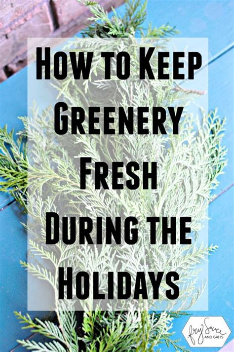 how to prevent holiday fresh greenery from drying out