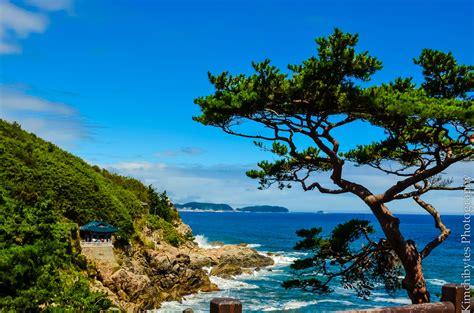 in korea the best beaches in korea to seoul kimchibytes