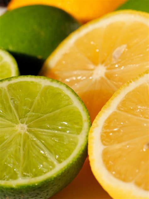 which is better lime or lemon lemon lime frozen yogurt wholesale frozen yogurt powder