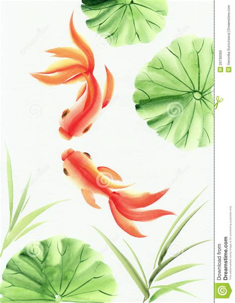 Lotus Leaf Original 30pcs lotus and gold fish stock photography cartoondealer 26196242