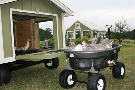 How To Build A Backyard Water Park Portable Goose Coop Tour