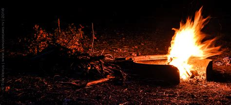 fire theme in lord of the flies lord of the flies and human social behavior in natural