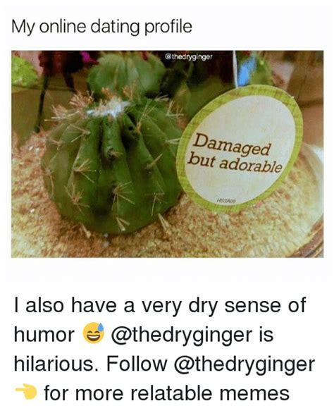 Dry Humor Memes - my online dating profile damaged but adorable i also have