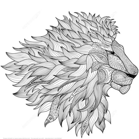 zentangle lion pattern lion zentangle coloring page zentangles animals birds