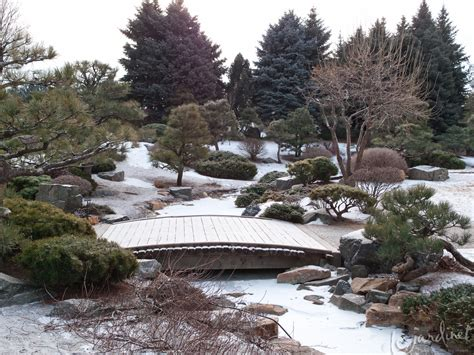 japanese garden in winter denver botanic gardens a winter