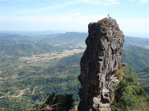 Climbing Plants In The Philippines - top 10 must climb mountains in the philippines