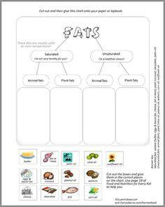 healthy fats lesson plan the six essential nutrients lesson plan and worksheet