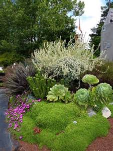 Rock Garden Plant 304 Best Rock Gardens Ground Covers Images On Landscaping Ideas Flowers And