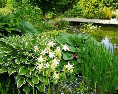 Garden Newcastle Emlyn Blaenfforest Cottage Holidays Newcastle Emlyn Reviews