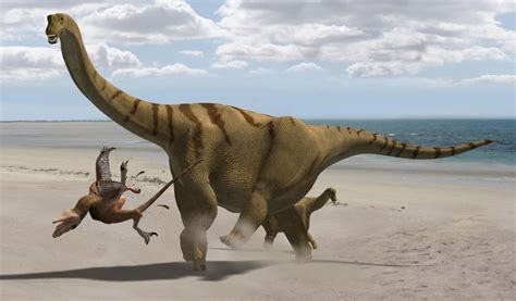 beautiful wallpapers  desktop dinosaur wallpapers
