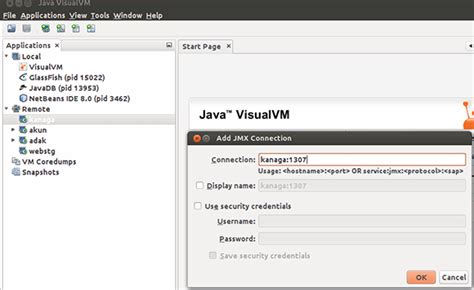 tutorial java visualvm configuring visualvm to connect to the app server