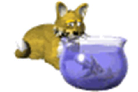 imagenes gif animadas sin fondo imagenes animadas de peceras gifs animados de casa