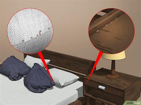 cimici da letto vestiti 4 modi per prevenire un infestazione di cimici da letto