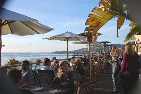 roof top bar laguna best food in laguna beach travel guide on tripadvisor