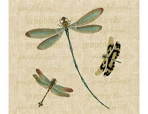 Burlap Upholstery Vintage Teal Dragonflies Insects Digital Download By