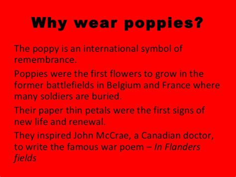 top 28 why is the poppy a symbol of remembrance day student voice does the poppy still have