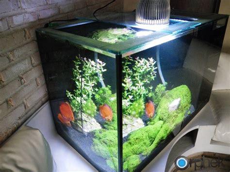 freshwater planted aquarium led lighting aquarium