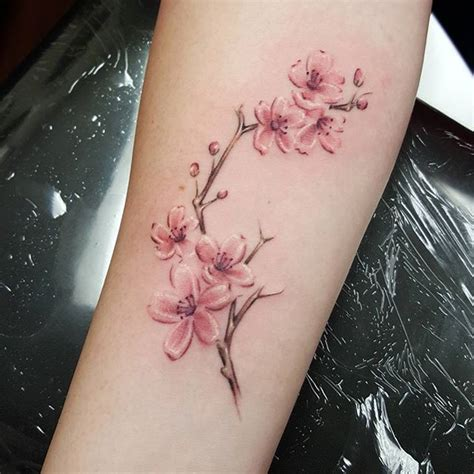 watercolor tattoo kiel collection of 25 cherry blossom image