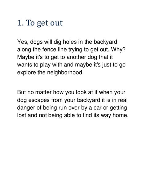 why do dogs dig holes in the backyard 4 reason why dog digging in the backyard learn how to