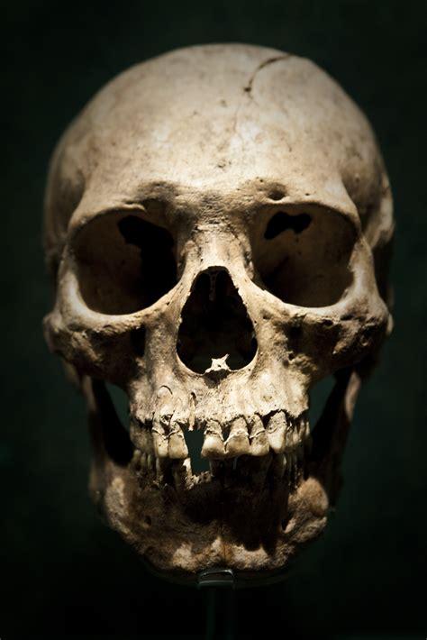 Mexico Skull Bones Pinterest Skeletons Tattoo And Skull On