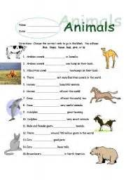 worksheet animal subject verb agreement
