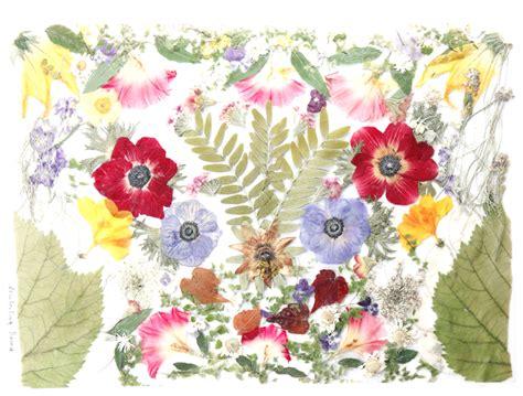 fiori essiccati tovaglietta con fiori essiccati f