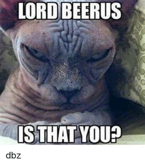 is that you lord beerus is that you meme on me me