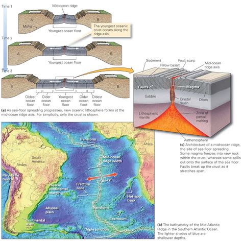 Investigating Seafloors And Oceans 1 divergent plate boundaries and sea floor spreading learning geology