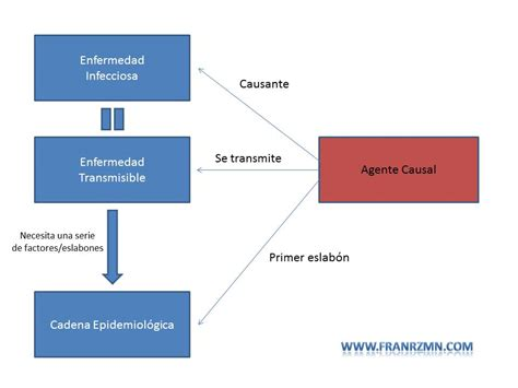 cadena epidemiologica agente causal agente causal en la enfermedad infecciosa blog de