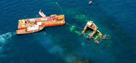 News Roundup Wrecked Cargo Ship And Behaving Badly by Sunlive Reef Contaminated From Rena The Bay S News