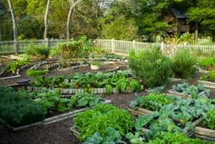 raised vegetable garden layout plans home design ideas
