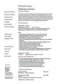 resume sles for marketing marketing assistant resume description template