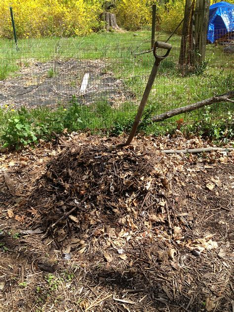 how to start a compost bin in your backyard simple ways to celebrate earth day every day big