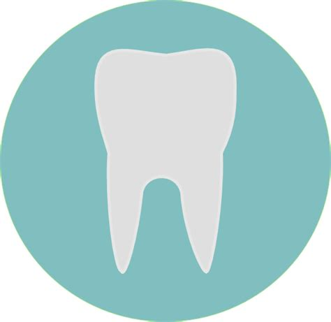 tooth clipart tooth clip at clker vector clip
