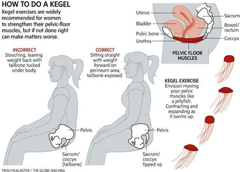 How To Do Pelvic Floor Exercises by Kegel Exercises