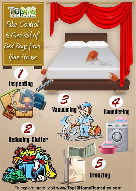 heres    control  rid  bed bugs   house top  home remedies