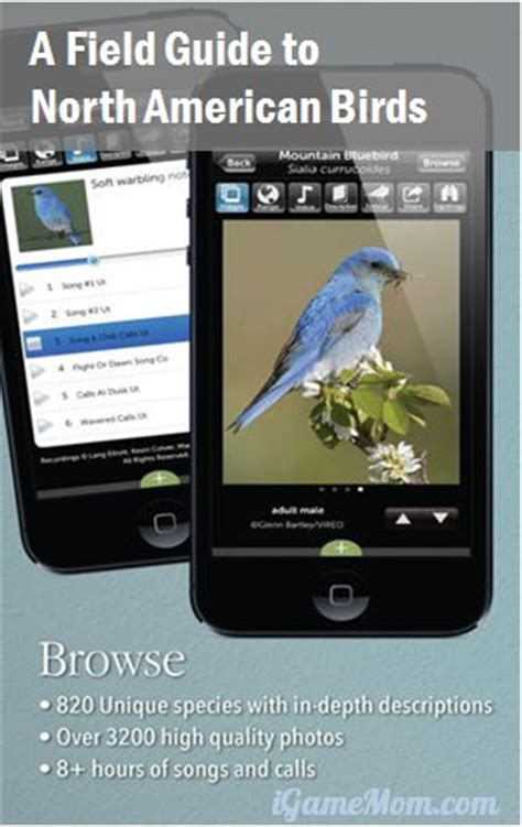 what a plant knows a field guide to the senses updated and expanded edition books audubon birds an encyclopedia app of american birds