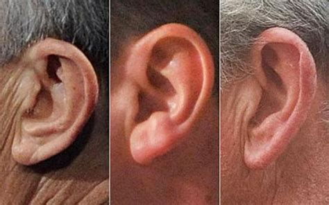 What Does Each Color Mean by Shape Of Ears A New Way Of Identifying People In Airports