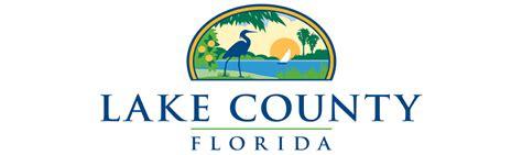 Detox Lake County Il by Lake County Logo
