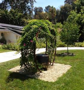 Arch Shaped Trellis These Metal Garden Trellises Are Beautiful With Or Without