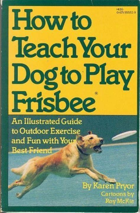 how to a to play frisbee how to teach your to play frisbee
