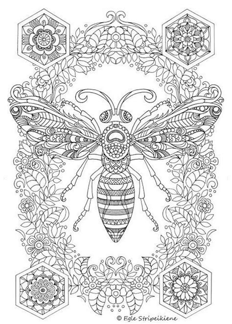 Insect Colouring Pages Printable