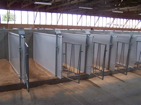 calf housing design calf housing design 28 images housing of calves farmtec a s calf housing calf