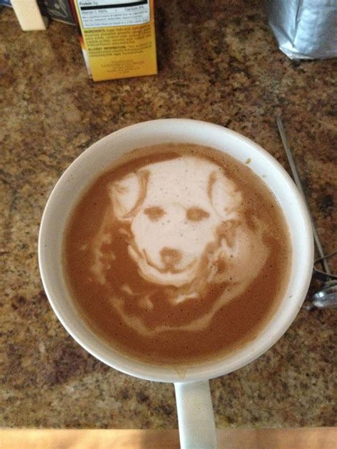 starbucks puppy latte 17 best images about latte on italia latte and a wolf